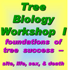 Tree Biology Workshop I