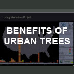 Benefits of Urban Trees